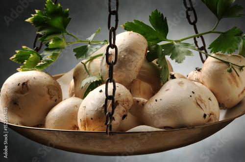 agaricus bisporus champignon portobello pieczarka mushroom fungo champi n com n funghi. Black Bedroom Furniture Sets. Home Design Ideas