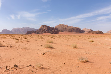 Great expansive of the Wadi Rum Desert with orange sand and rocky mountains in the distance. Blue sky with thin clouds is above. Foreground shows sparse vegetation.