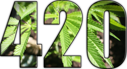 420 Logo ( Marijuana ) High Quality