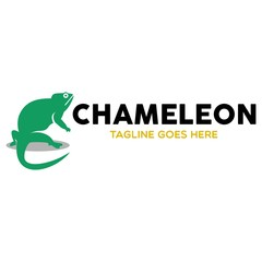 Unique Chameleon Logo