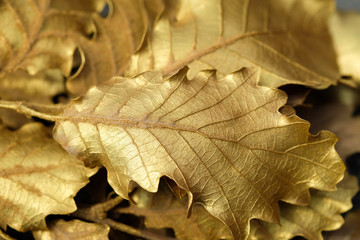 Close-up background of dried leaves made of gold.