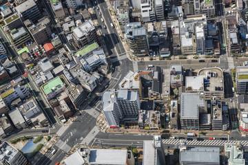 Tokyo streets and buildings, aerial top view, Japan