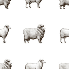 Vector seamless pattern with graphical sheep silhouettes, retro hand drawn illustration.