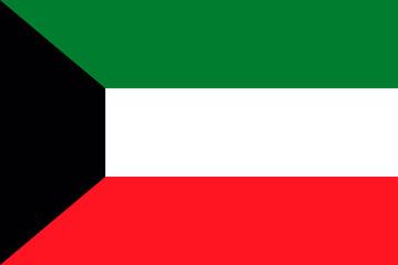 Kuwait national flag. vector illustration. business education