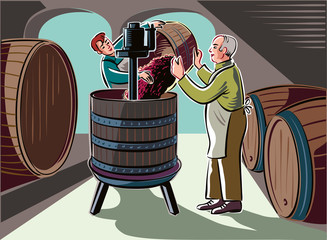 Cellar with big barrels, a young man pays of ripe grapes, freshly picked, in a press for crushing.