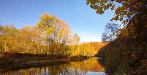 River with reflexion of autumnal forest