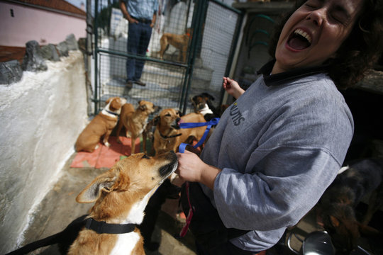 Sofia Goncalves, a director of the APCA (Protection Association for Abandoned Dogs), laughs at the APCA centre in Sintra