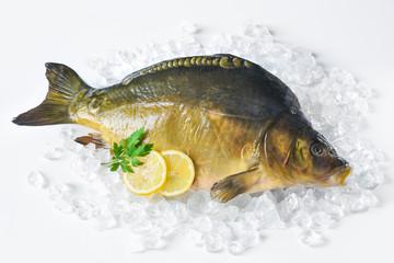 Fresh carp with lemon on ice