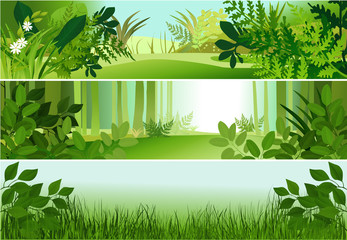 Nature banners with forest specific elements