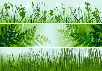 Nature banners with green leaves