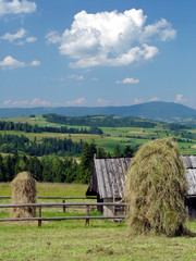 stacks of hay in the mountains in summer