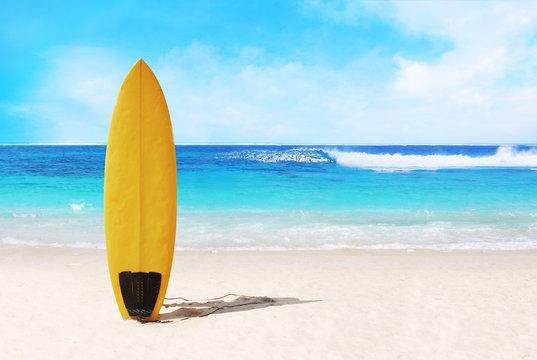surfer board on the beach