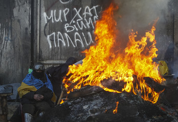 Anti-government protester rests at an open fire as temperatures reach minus 20 degrees Celsius at a barricade near Independence Square in Kiev
