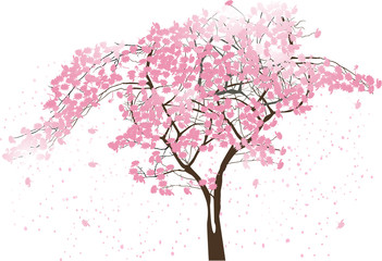 spring abstract tree with large pink blooms on white