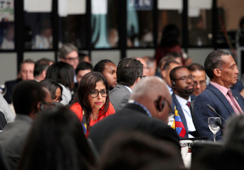 Venezuela's Foreign Minister Delcy Rodriguez participates in the 46th General Assembly of the Organization of the American States in Santo Domingo
