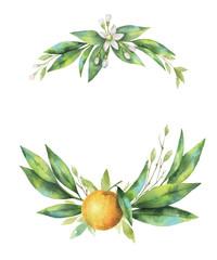 Watercolor hand drawn wreath fruit orange branch.