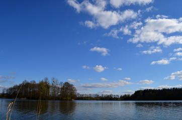 lake view spring time