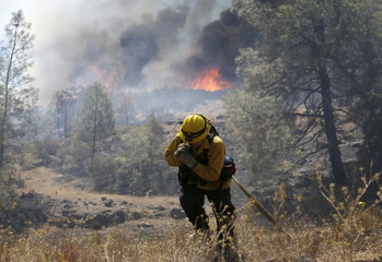 A firefighter pulls a hose up an embankment as flames from the Jerusalem Fire appear in background in Lake County