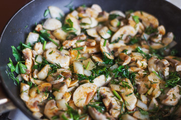 Cooking the mushrooms with the herbs, onion and spices in the pan. Photos for recipes.