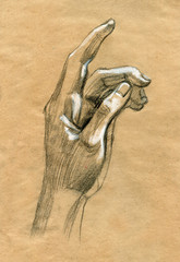 Praying Hands drawing illustration realistic sketch
