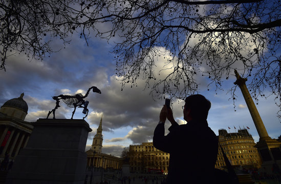 'Gift Horse', a skeletal horse sculpture by German-American artist Hans Haacke is unveiled on the fourth plinth in Trafalgar Square in central London
