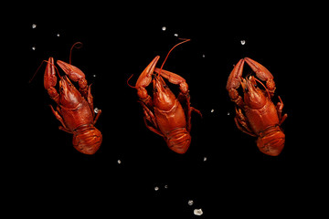Three boiled crayfishes with sea salt isolated on black