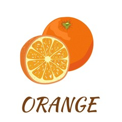 Orange. Flat design. Vector illustration. Ripe fruits for Your ideas.