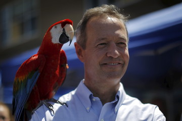 "Democratic presidential candidate and former Maryland Governor Martin O'Malley poses for a photograph with ""Rainbow the Macaw"", during Market Square Day in Portsmouth"