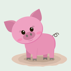 The pig is standing in a puddle.