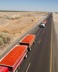 Roma Tomato Truckloads Travel Via Semi-Truck to Market