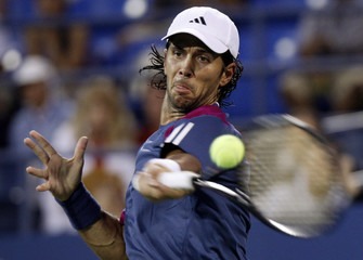 Verdasco of Spain hits a return to compatriot Ferrer during the U.S. Open tennis tournament in New York