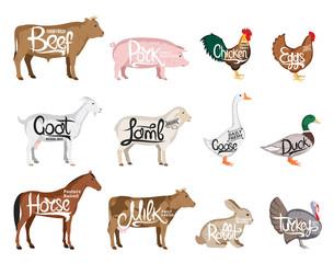 Vector farm animals collection. Butchery icon templates
