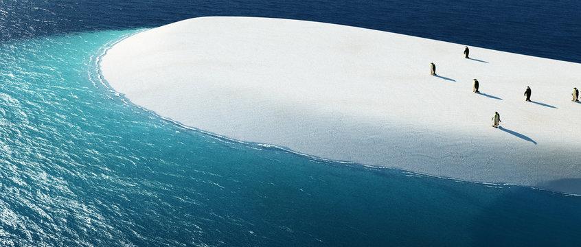 illustration of penguins on top of an iceberg