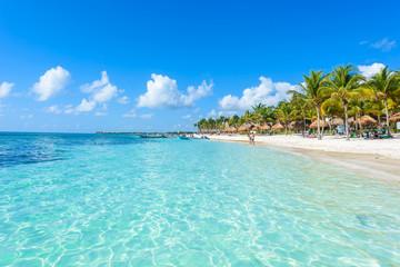 Canvas Prints Green coral Riviera Maya - paradise beaches in Quintana Roo, Cancun - Caribbean coast of Mexico