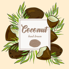 Hand drawn coconut with palm leaves. Package design.
