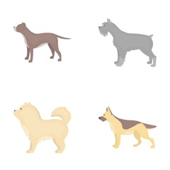Pit bull, german shepherd, chow chow, schnauzer. Dog breeds set collection icons in cartoon style vector symbol stock illustration web.