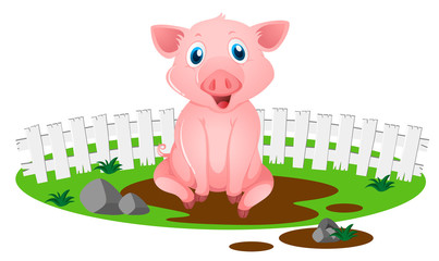 Little pig in muddy puddle
