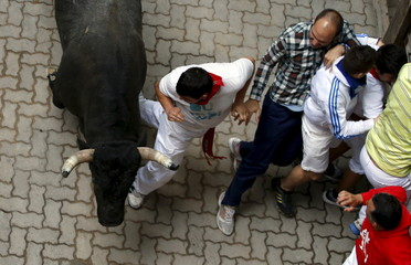 Runners try to protect themselves from a Jose Escolar fighting bull during the fifth running of the bulls of the San Fermin festival in Pamplona