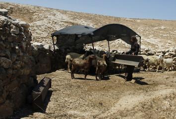 A Palestinian cave dweller carries a feeding trough in Al-Mufaqara, near Hebron