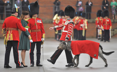 Britain's Catherine, Duchess of Cambridge presents a shamrock to 'Conmael', the mascot Irish hound at Aldershot army base in southern England