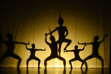 human shadow show
