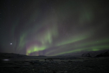 Aurora Borealis or Northern Lighs, over the Jökulsarlon, Iceland