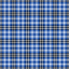Black, blue and white plaid seamless pattern