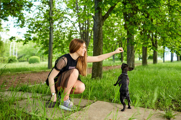 A girl is playing with her dog  French bulldog in the park.