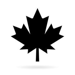 Maple leaf vector pictogram