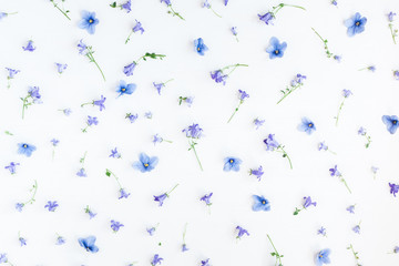 Flowers composition. Pattern made of bellflower and pansy flowers on white background. Flat lay, top view