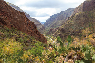 Panoramic view of Guayadeque ravine. Gran Canaria. Spain