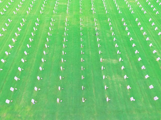 Aerial view of US Military Cemetery in Houston, Texas, US. Endless row of white marble gravestones, grave markers with flags and flowers on Memorial Day to honor fallen heroes in war, military service