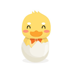 Cartoon baby duck on white background.