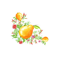 Watercolor vintage element, detail from the figure of plants, rose flower, dog rose and fruit of Yellow pear. Beautiful watercolor card.